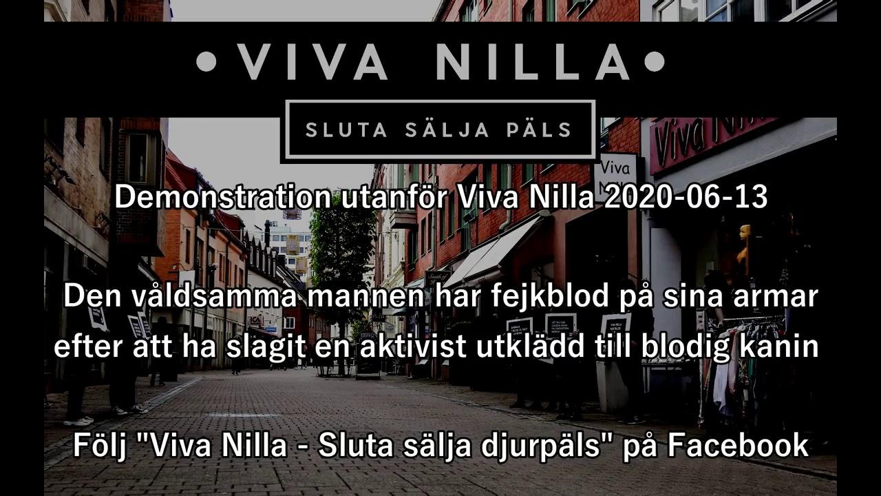 Download Bojkotta Viva Nilla: Galen gubbe slår djurvänner under protest mot djurplågeriet.