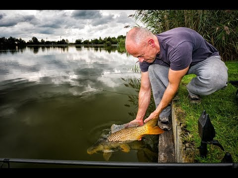 Fishing In Holland - Responsible Angling