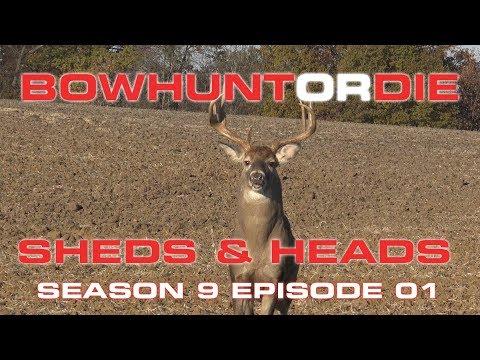 Shed Hunting- Bowhunt or Die Season 09 Episode 01