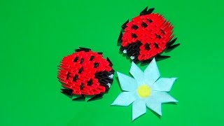 3D origami ladybug tutorial for beginners