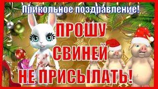 С НОВЫМ ГОДОМ🎄Прошу свиней не присылать в новый год 2019🎄