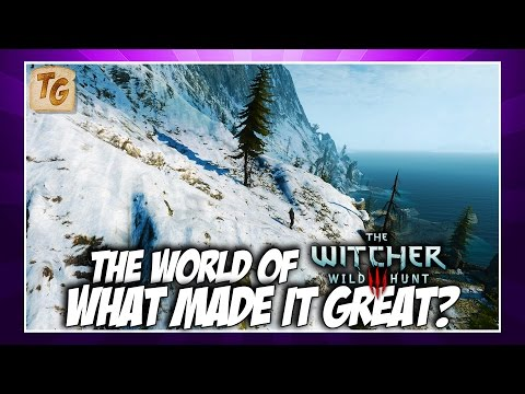 The World of The Witcher 3: Wild Hunt - What Made It Great? | Game World Analysis