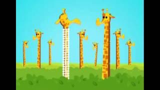 Avez vous déjà vu..? Une girafe avec un collier?