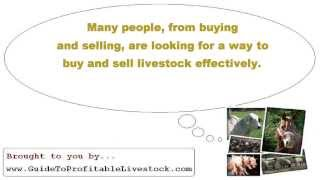 Profitable Livestock Business