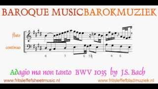 Baroque Music Barokmuziek Adagio ma non tanto BWV1035 Bach