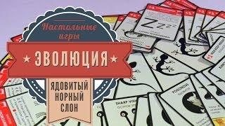 видео Настольная «эволюция»