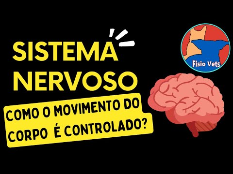 Fisiologia Gastrointestinal | FISIOLOGIA (Parte 1) from YouTube · Duration:  33 minutes 2 seconds