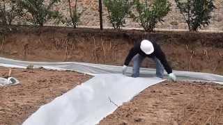 Армирование ленточного фундамента(Ленточный фундамент от строительной компании