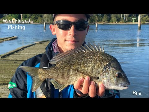Forster Fishing Trip 2018 EP9