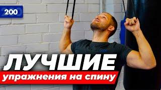 Упражнения для спины. Эти упражнения заменят зал
