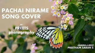 Preets Photography - Pachai nirame song cover