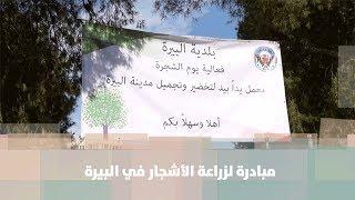 مبادرة لزراعة الأشجار في البيرة