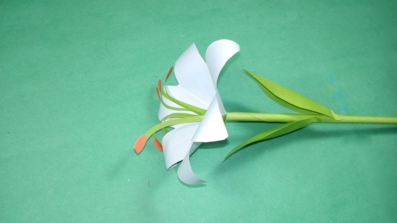 The Origami Lily with the Flower Stem | 720x1280