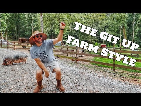 Peaches 🐷 & The Dancing Farmer Do Blanco Brown's Git Up Challenge