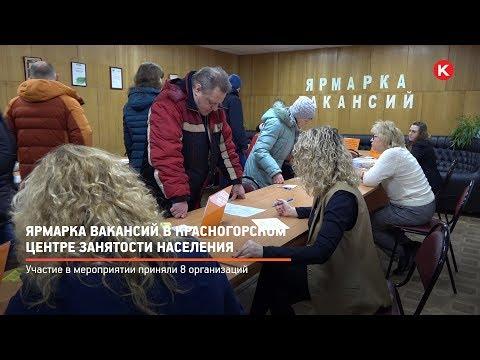 КРТВ. Ярмарка вакансий в Красногорском центре занятости населения
