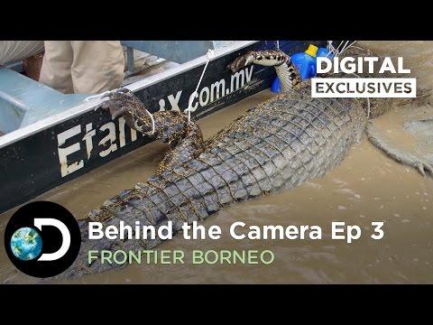 Behind the Camera: Killer Crocodile | Frontier Borneo S01E03