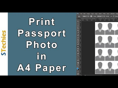 Print Passport size Photo in A4 Photo Paper Photoshop (32