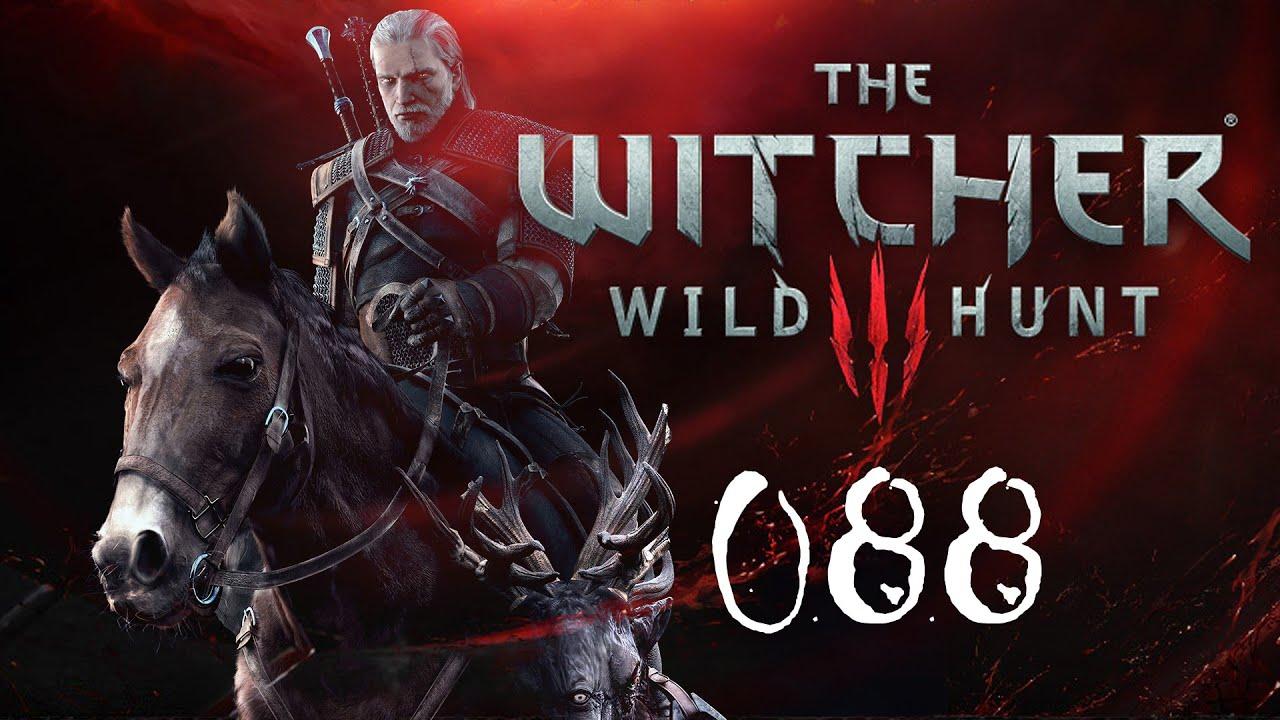 witcher 3 staatsräson