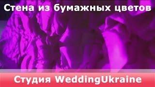Стена из бумажных цветов(Стена из бумажных цветов Декор для оформления на свадьбу http://WeddingUkraine.com Свадебный декор: • Бумажные помпон..., 2014-04-24T16:50:28.000Z)