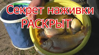 Рыбалка Супер наживка для ловли карася My fishing