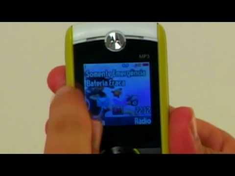 8663363ca Celular Motorola W233 - BuscaPé Vídeos - YouTube