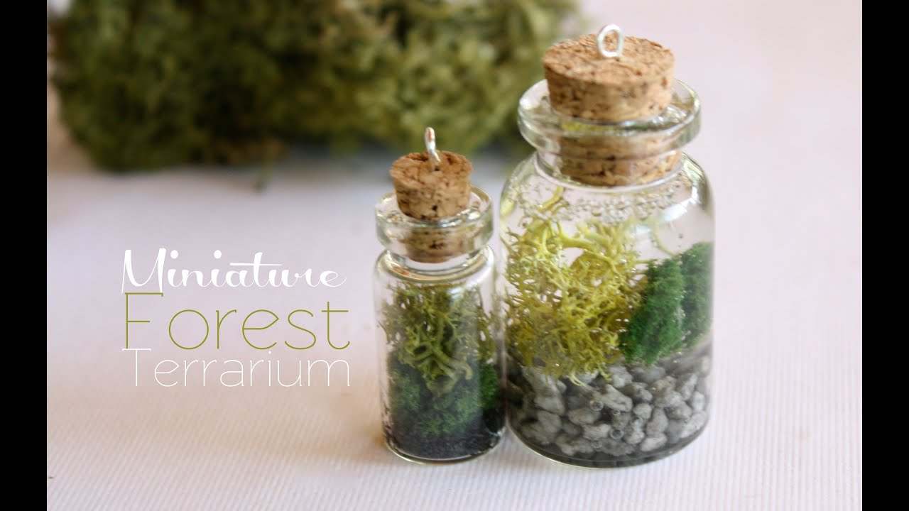 Miniature Forest Terrarium Necklace Youtube