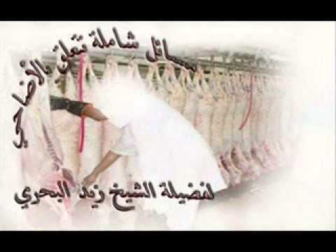 الشيخ زيد البحري  ما يجزئ وما لا يجزئ من الأضحية