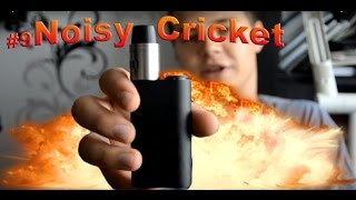 выпуск #9 Обзор на Noisy Cricket