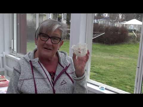 """Birgitta Engman """" Mitt liv som frisör """""""