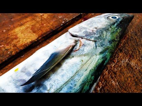 KINGFISH CUTTING   FISH CUTTING SKILLS