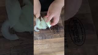 초딩의 연어용 양파 자르기