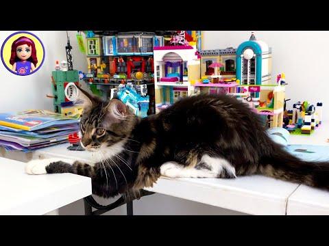 Rainbow Apartment Destruction! Lego VS Kitten
