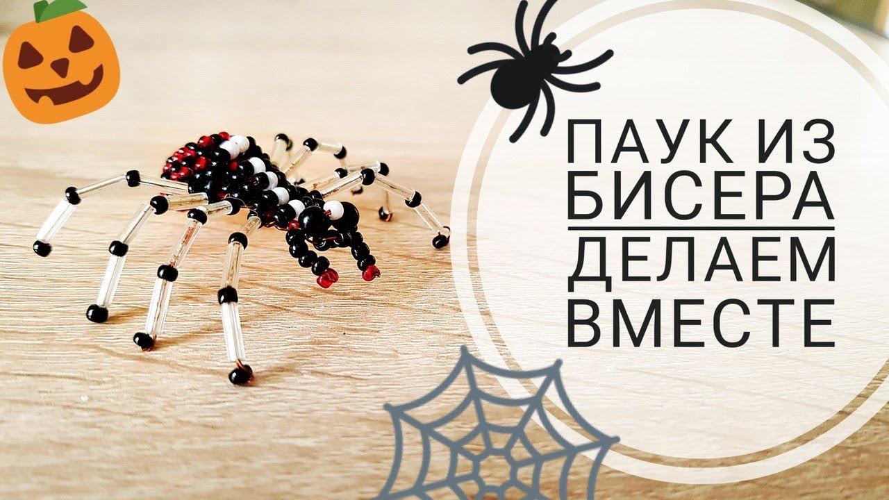 ПЛЕТЕМ ПАУКА ИЗ БИСЕРА♥ Настоящий паук, которого вы не будете бояться))