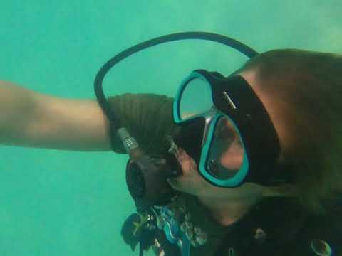 Discover Scuba 10 Feb 2021 | Discover Scuba Diving  4 /22 /20
