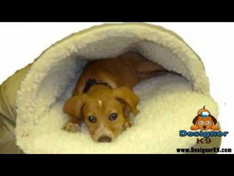 cave-dog-bed-from-designer-k9