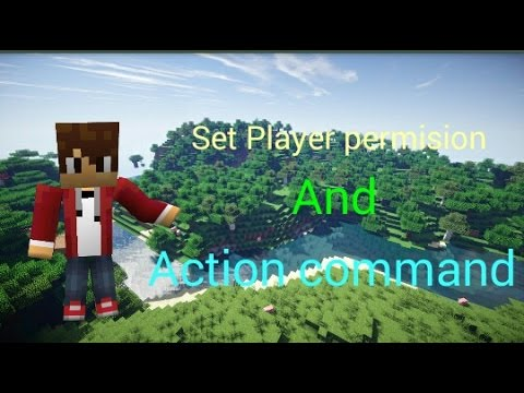 Set Player Permision And Action Command Use Leet.cc