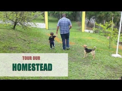 Tour our Homestead in Juquitiba Brazil!