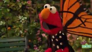 Elmo's Butterfly Song