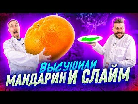 Что если ВЫСУШИТЬ мандарин, слайм, кукурузу, яйцо? / Научные нубы 2.0
