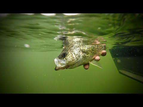 Corkin' Crappies – Fishing Edge TV