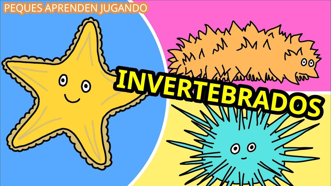Animales invertebrados para niños  Video de Peques Aprenden Jugando