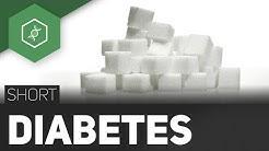 hqdefault - Zuckerkrankheit Diabetes Mellitus Typ 2