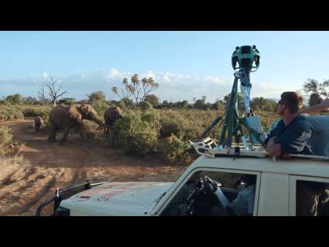TRAILER - Google & Save the Elephants partner to raise awareness about African elephants