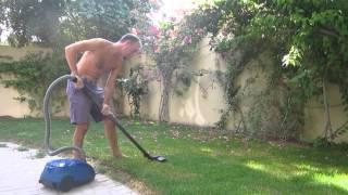 Qatar Gardening