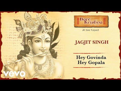 Hey Govinda Hey Gopala - Live Concert | Jagjit Singh Bhajans