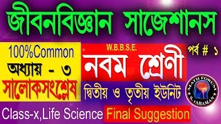 CLASS IX_LIFE SCIENCE SUGGESTION//Class 9 life science_Physiological Processes of Life_Chapter 3.