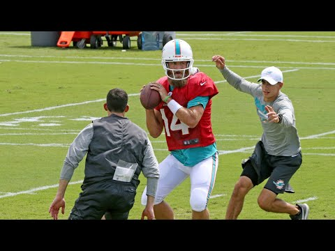 Miami Dolphins Offensive Coordinator Says Ryan Fitzpatrick Brings Energy To The Team