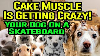 Want Your Dog/Cat Pic On A Skateboard? CAKEMUSCLE ANNOUNCEMENT
