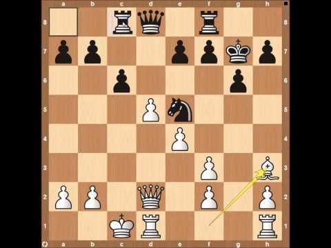 World Chess Championship 2014 Game 1 Anand vs Carlsen