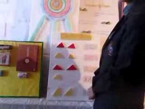 School Exhibition Math Projects Youtube